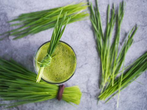 Fresh wheat grass juice and wheatgrass plant for health on top view. Nutrition food.