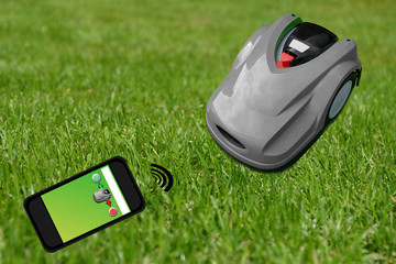 Mowing robot in the garden with smartphone control