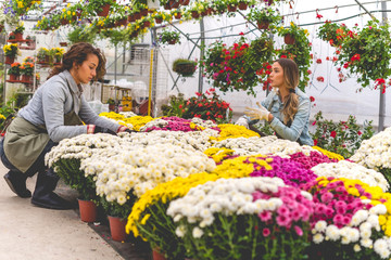 Florists at greenhouse
