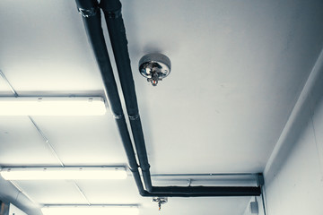 Fire sprinkler nozzle and pipes on white celling, automatic fire protection system in buildings