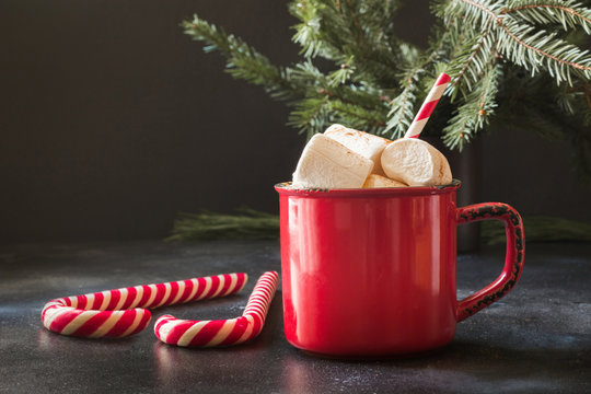 Mug of hot chocolate and cacao with marshmallows with christmas tree branches on black board. Xmas holiday.