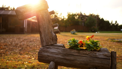 Old wooden horse flower pot with beautiful afternoon sunset background.