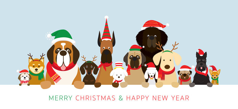 Dogs Wearing Christmas Costume Holding Banner