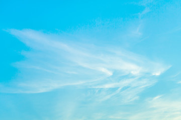 White cirrus clouds in bright turquoise sky (background)