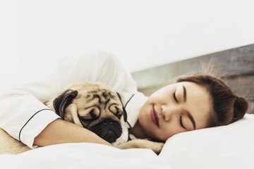 Cute dog pug breed sleep with owner in bedroom feeling so happiness and comfortable