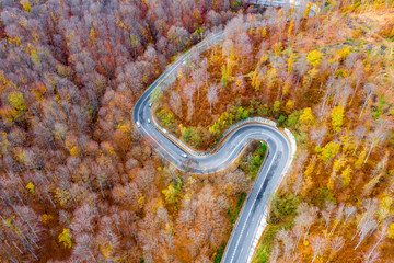 Cars on a extreme winding road trough the forest