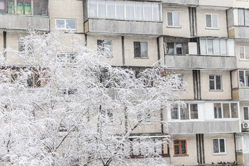 Trees under a thick layer of snow on the background of high-rise buildings in the snowfall