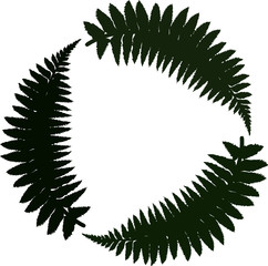 Green fern emblem