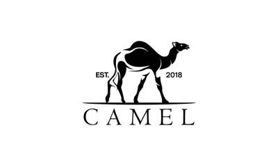 camel logo design template,vintage camel vector illustration