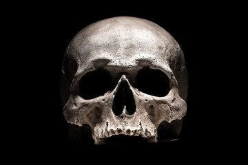 Human skull on black background close up