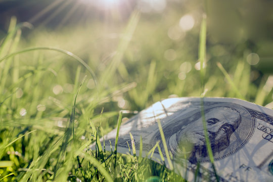 American one hundred dollar bill on green grass. light rays background.