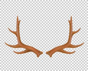 Vector reindeer antlers, deer horns realistic logo