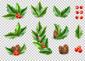 Vector realistic merry christmas holly leaves fir