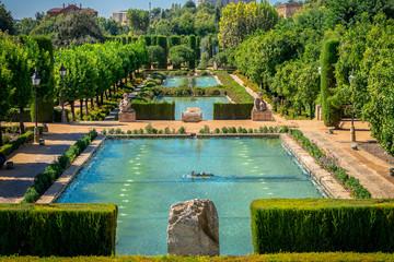 Cordoba garden in Cordoba Spain