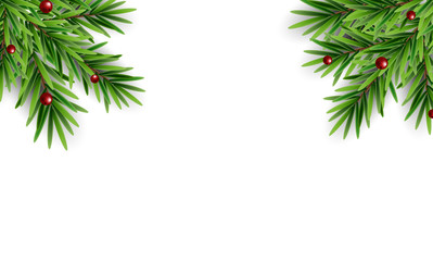 Spruce branches fir with berries abstract christmas background Vector Illustration