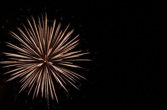 White starburst firework in black sky on the Fourth of July