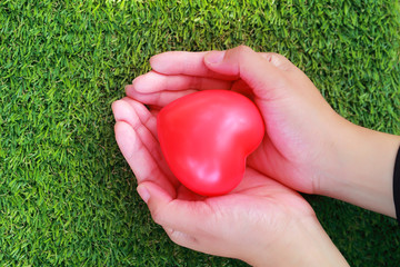 human hands holding red heart on green glass