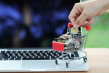 trolley and coins with human hand on computer, idea for shopping and online payment using as business background.