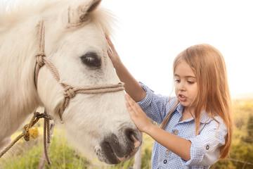 Kleinkind streichelt ein Pferd