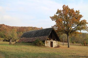 Small house with wine cellar near Batovce dam, in  Levice region, Slovakia