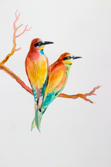 Watercolor bird painting original realistic colorful  of Bird lovers getaway