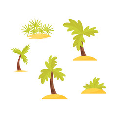 Flat vector set of bright green palms trees and bushes on sand. Tropical plants. Decorative elements for aqua park