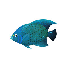 Predatory blue-colored fish with big fins, side view. Marine animal. Sea creature. Flat vector element for poster or book