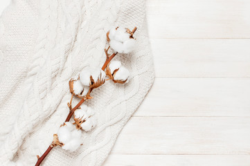 White knitted sweater and branch of cotton on light wooden background top view flat lay. Fashion Clothes Trendy Cozy pullover Jumper Autumn accessories Winter fashion look Delicate cotton flowers