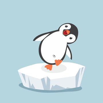funny penguin on ice floe