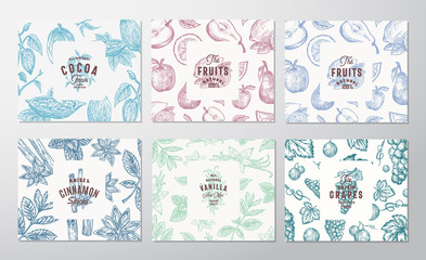 Hand Drawn Grapes, Fruits, Cocoa Beans, Mint, Nuts and Spices Cards Set. Abstract Vector Sketch Pattern Backgrounds Collection with Retro Typography Vintage Labels.
