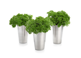 Cups with fresh aromatic parsley on white background