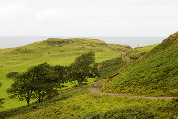 Wall Mural - Scotland scenic landscape