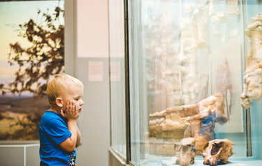little boy history museum looks exhibits emotion Fototapete