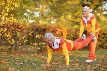 Portrait of senior couple doing exercises in autumnal park