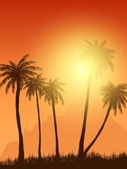 summer palm trees in sunset scene. vector illustration. EPS 10