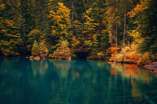Autumn time at romantic forest lake Blausee, Switzerland.