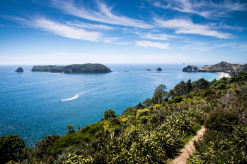 Garden Poster Cathedral Cove Scenic view of Coromandel Peninsula in New Zealand