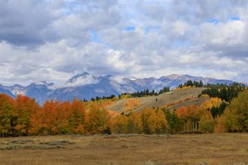 Scenic Autumn Landscape in the Tetons