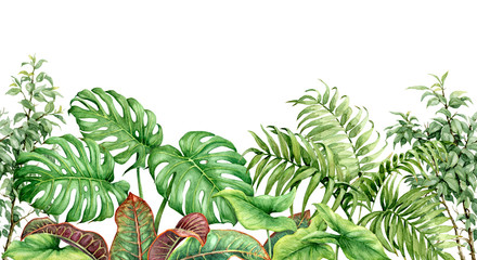 Watercolor Tropical Plants Seamless Border