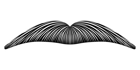 Isolated detailed mustache image. Vector illustration design