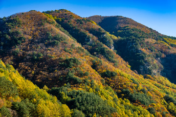 Fall in northern South Korea Mountainside