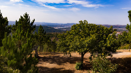 Montagne Portugaise