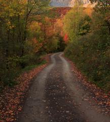 The Autumn in the Ordesa Valley (Parana Nacional de Ordesa - Monte Perdido)