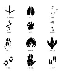 Chinese zodiac signs icons set on yellow round background.   Paw prints marks , footprints of rat, mouse, snake, dragon, pig, rooster, rabbit, horse, monkey, dog, tiger, ox, bull. Illustration