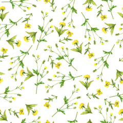 Seamless pattern with elegance yellow flowers on white background. Hand drawn watercolor illustration.