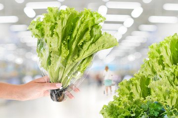Pack of fresh lettuce in a hand. Large supermarket.