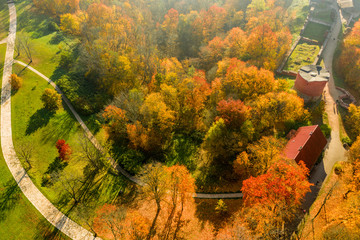 Beautiful aerial view of the golden autumn over huge yellowish forest.