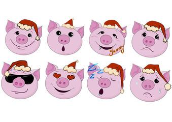 cartoon animal icon set new year pigs