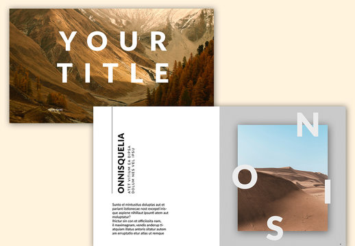 Web Presentation Layout with Grey Accents
