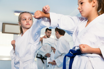 Garden Poster Martial arts Pair of little girls practicing new karate moves during class